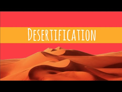 what are two causes of desertification