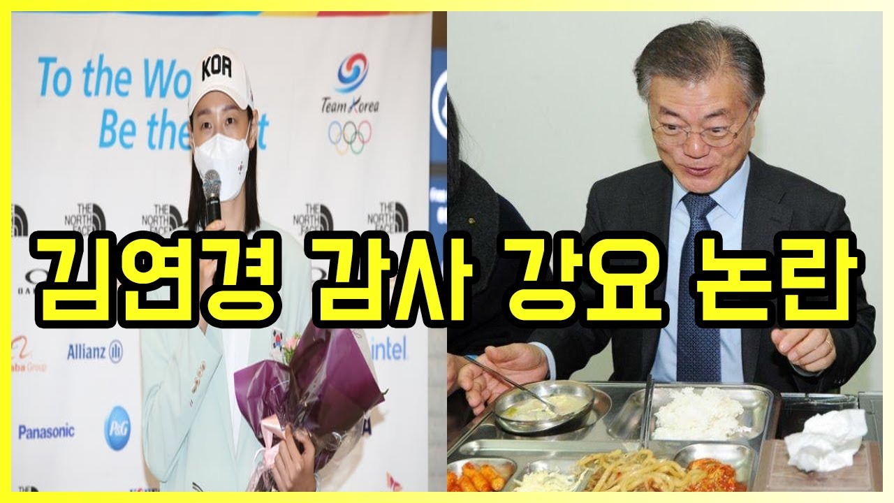 김연경 대통령 감사 인사 강요 논란   도람뿌
