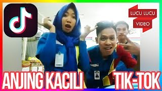 Video Anjing Kacili Kompilasi Instagram | Anjing Kacili Challenge download MP3, 3GP, MP4, WEBM, AVI, FLV Juli 2018