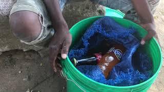 Crianças de Nampula garantem sustento das famílias