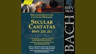 """Schweigt stille, plaudert nicht, BWV 211, """"Coffee Cantata"""": Recitative: Nun geht und sucht der..."""