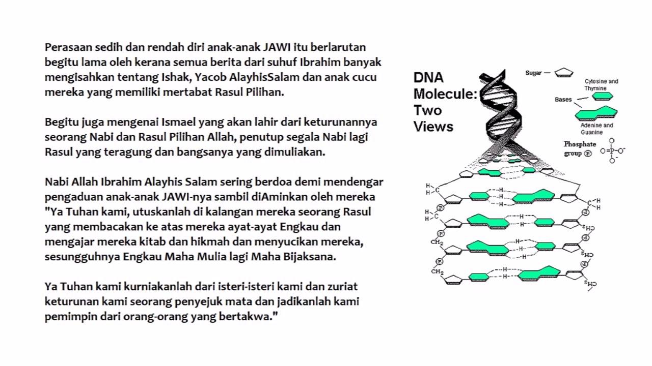 Identiti Malayu Jawi Bani Ibrahim Yg Di Hilangkan Clip3
