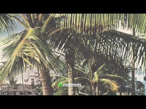Dos Gajos - Bajo las palmeras (karaoke CON voz) (Exclusivo Notodo.com)
