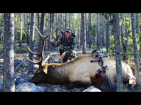 Archery Elk Hunt Montana – Stuck N the Rut 142