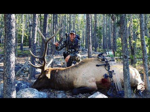 Archery Elk Hunt Montana – Stuck N the Rut 142