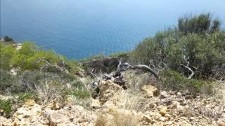 Estrella Coral de Mar Resort & Spa in Alcudia Mallorca - Spanien Hotel Bewertung