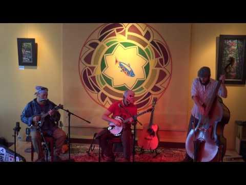 Launch P.A.D. - Shady Grove/Dear Mr. Fantasy/Shady Grove