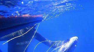 Work out 1. Pesca submarina Aleix agost 2014, dentex a la Costa Brava.