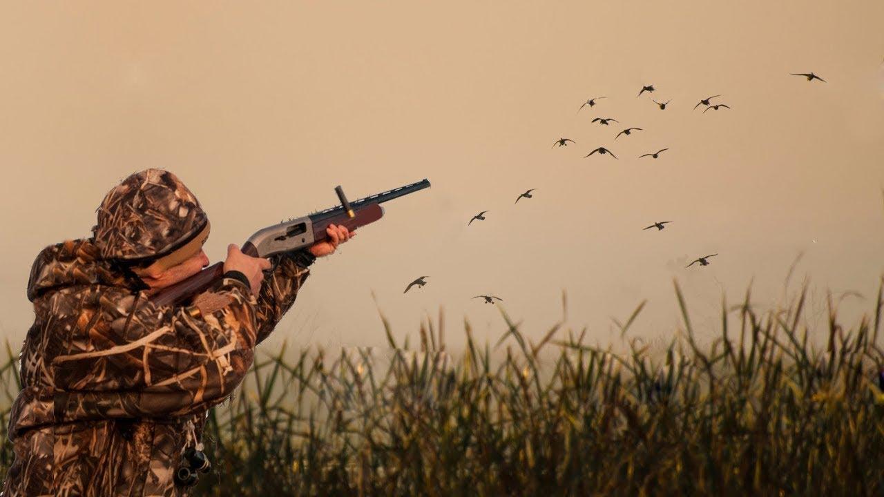 открытие охоты на утку в ульяновске картинка жены, обмен фото
