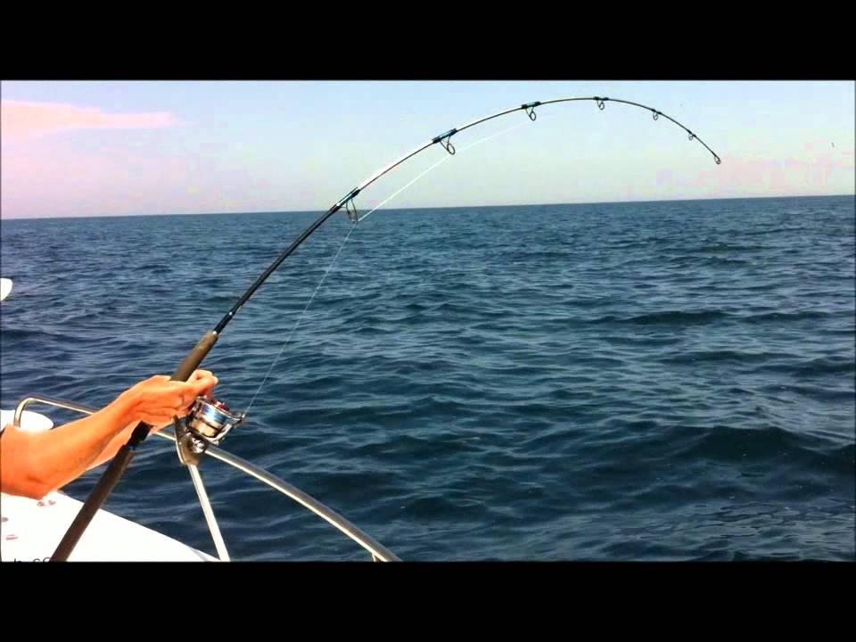 Vidéo sur vvts la pêche 2016