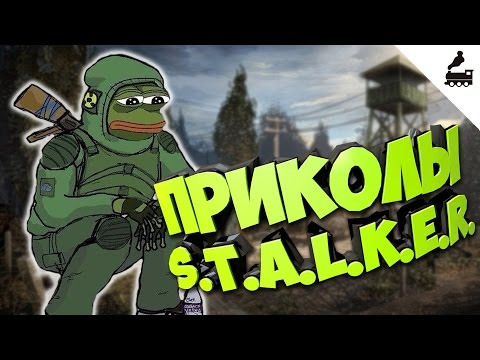 скачать приколы сталкер stalker