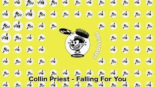 Collin Priest - Falling For You Original image
