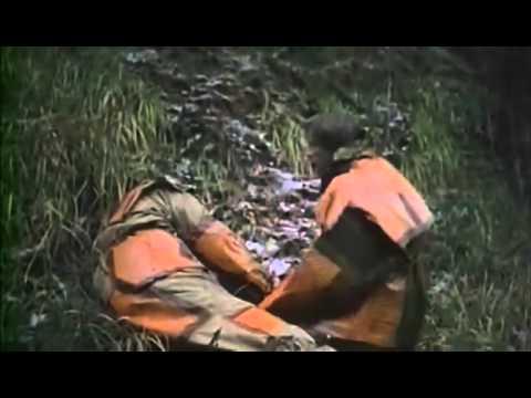 Тайга. Курс выживания (2002) - смотреть онлайн в хорошем