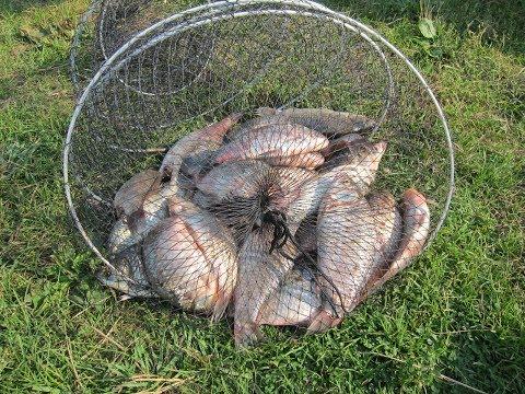 Рыбалка в Шарыповском р-не. Озёра: Белое, Кашколь, Косанголь.