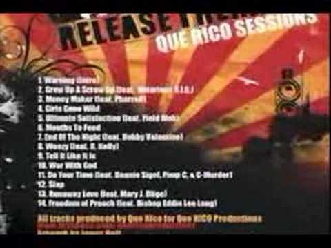 Ludacris - Ultimate Satisfaction (Que R!CO Remix)