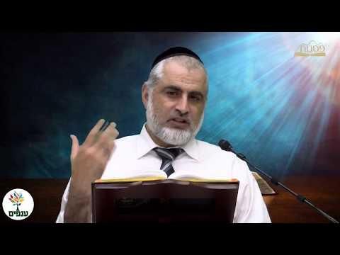 הרב חיים דרשן : מרכז רוחני פסגות : הלכות ט' באב HD