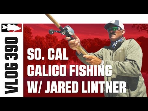 Jared Lintner Inshore Fishing In Southern California With Aftco - TW VLOG #390