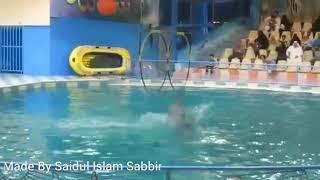 Amazing Dolphin's Show | Dammam | Saudi Arabia