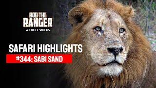 Idube Safari Highlights #344: 16 - 19 May 2015 (Latest Sightings) (4K Video) #youtubeZA