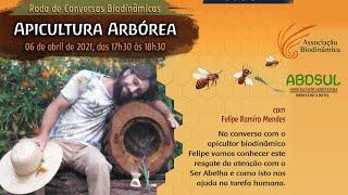 Conversas Biodinâmicas Apicultura Arbórea (com Felipe Ramiro Mendes)