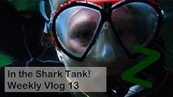 In the Shark Tank | Weekly Vlog 13 | Splodz Blogz