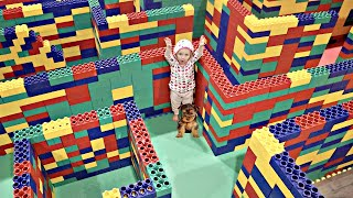 Giant Lego Maze! Puppy Vs Baby