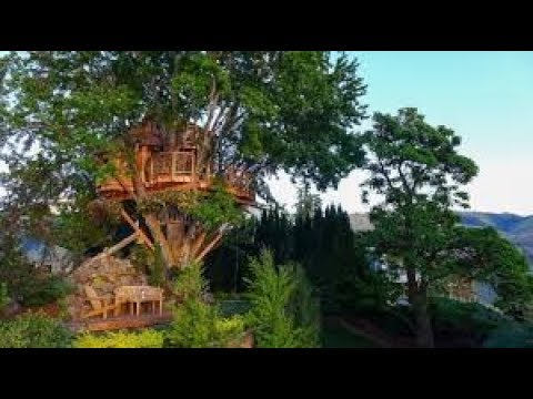 Richest Tree Houses Ever. $$$