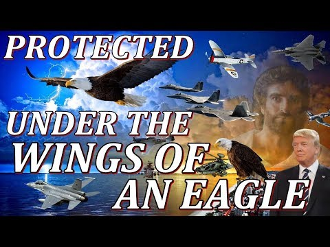 PROTECTED UNDER THE WINGS OF THE EAGLE, DONALD TRUMP,  REV 12, KIM CLEMENT PROPHECY, BIBLE CODES.