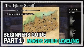 ESO Beginners Guide to Success Part 11 - Mage