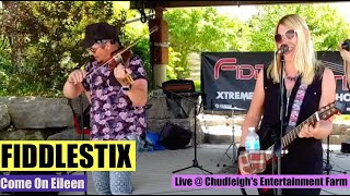 Come On Eileen cover by Fiddlestix