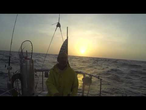 Offshore sailing. Blue water. Morgan 32. Cuba to Guatemala