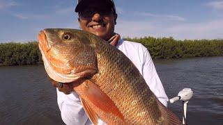 Pesca de ROBALO Y PARGOS con PASEANTES