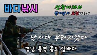 [바다낚시]통영 홍도 방어  부시리 선상낚시