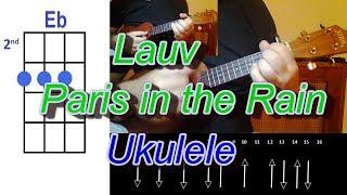 Download Lagu Lauv Paris in the Rain Ukulele Mp3