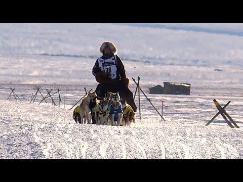 The beauty of the Iditarod trail