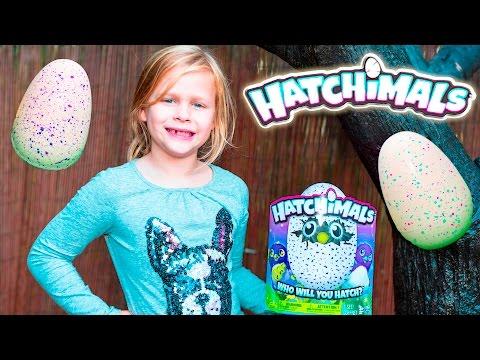 HATCHIMALS Assistant Hatchimals Surprise with PJ Masks Eggs Video