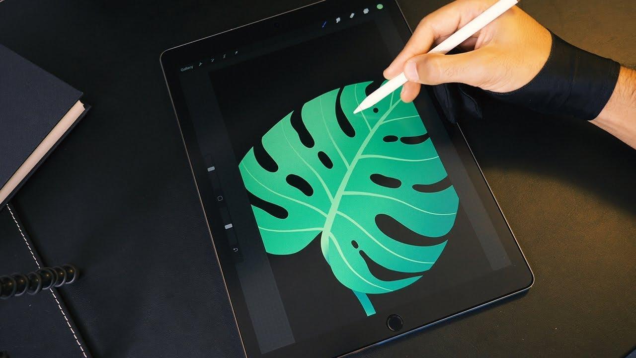 Monstera Leaf ???? Digital Illustration