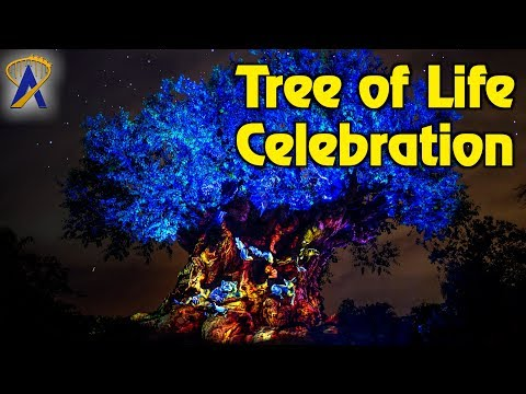 Pandora Tree of Life Celebration Moment with Drones