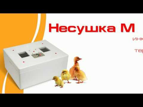 Инкубатор Несушка М. на 76 яиц автоматический. 220/12 Вольт
