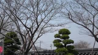 九州合宿免許 楽しい人気教習所 宮崎で人気 thumbnail
