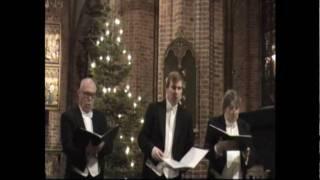 Mats Calvén, Glenn Bengtsson and Stellan Dahlin sing Visa i Advent by Gårdare in Helsingborg 2009