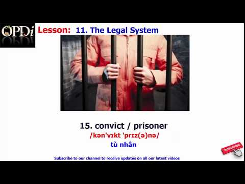 Oxford dictionary | 11. The Legal System | Oxford picture dictionary 2nd edition