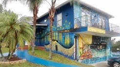 Mount Dora is Someplace Special - Unusual Landmarks Tour / Starry Night House / Old Joe & MORE
