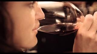 Storie di Stile #59: Antica Bottega del Vino (Verona)