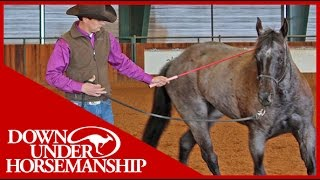 Clinton Anderson: Intermediate Testing, Groundwork Part 1  Downunder Horsemanship