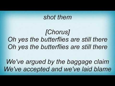 Sia - Butterflies Lyrics