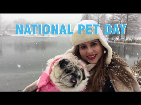 Sunday is National Pet Day!