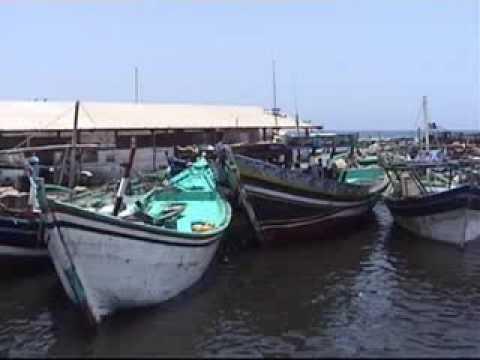 Hodeidah Fishermen - صيادين الحديده