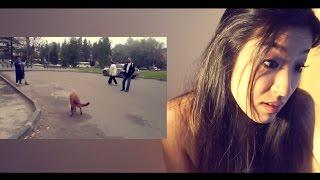 ПРИКОЛ! ПОДБОРКА ПРИКОЛОВ - Реакция Японки на смешное видео ржака жесть угар