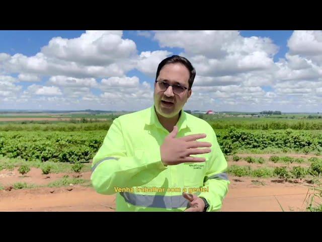 Commodity fertilizers
